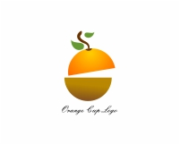 Orange fruit logo design